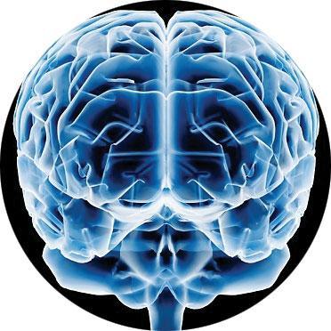 Ejercicio y neuronas